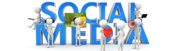 Guía de programación de Botones Sociales I: Twitter